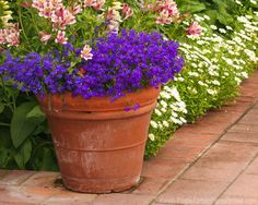 Garden containers in all sizes and materials make gardening possible for many urban dwellers. Use these tips to pick the right one.