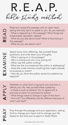How To Study The Bible: REAP Bible study method. Whether you're a beginner or just looking to dive d Soap Bible Study, Bible Study Plans, Bible Study Notebook, Bible Study Guide, Bible Plan, Bible Study Journal, Scripture Study, Bible Verses, Bible Quotes