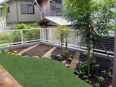 Edible Plants, Plant Decor, Garden Ideas, Backyard, Outdoor Structures, Gardening, Landscape, House, Yard