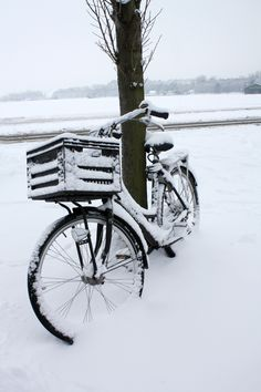 Bike in Egmond aan den Hoef, Holland I Love Winter, Winter Colors, Winter Day, Winter White, Winter Christmas, Black Christmas, Winter Magic, Winter's Tale, Snowy Day