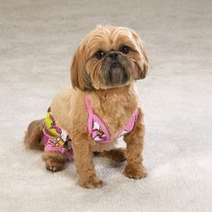 Cute Spandex bathing suit. Casual Canine® Maui Flowers Bikini is two-piece for easy movement. Comfy, practical fit: Velcro® closures at neck and belly, plus a tail hole.