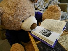 The bear feels at home in our library reading some of our books!