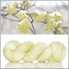 Belief superwash dewy dk yarn by expression fiber arts