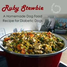 Ruby Stewbie recipe and insulin injection tip are now #ontheblog. #ruby #diabeticdog #diabetes #caninediabetes #glycemicindex #recipe #homemadedogfood #chanadal #insulin #humulinn