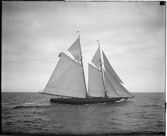 Fishing schooner Puritan off Gloucester by Boston Public Library, via Flickr