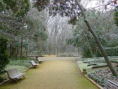 Campo grande. Parque en Valladolid