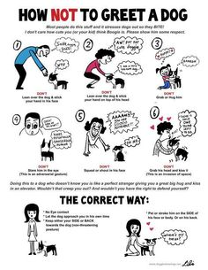 How NOT to greet a dog by Lili Chin.