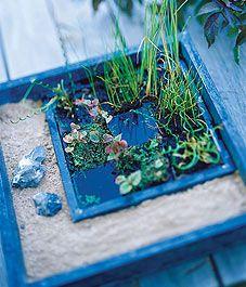 Build a mini water garden oasis