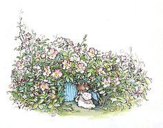 Dusty Dogwood & Poppy Eyebright, Brambly Hedge
