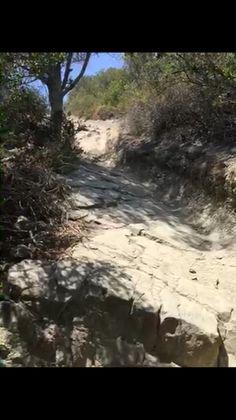 Car Wrecked Trail