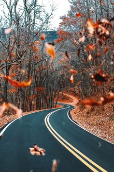 Autumn is coming. – Minutiæ Chronicles