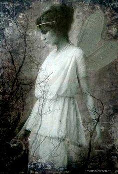 vintage fairy by Romany Soup, via Flickr