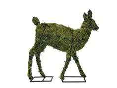 """Fawn 25"""" Mossed www.braungroup.com #topiary #containergardening #flowers #sculptures"""