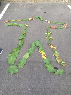 Human template surrounded with leaves.