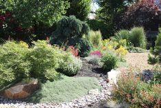 public xeriscaping at st george utah - Google Search St George Utah, Xeriscaping, Dry Garden, Lawn And Landscape, Public, Google Search, Plants, Plant, Planets
