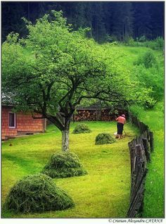 Moeciu de Sus, Romania (by Cristian Alexandru Catana) Beautiful Places To Visit, Wonderful Places, Places To See, Brasov Romania, Bucharest Romania, Visit Romania, Romania Travel, Love Garden, The Beautiful Country