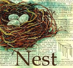 Mixed Media BIrds Nest Drawing on Distressed, Old Dictionary Page my-artwork