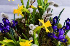 Blumige Frühlingsdeko für Fenster und Tisch selbst basteln
