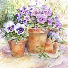 Blue Pansies and Terracotta - Rose Eddington