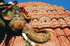 travel india - Google Search