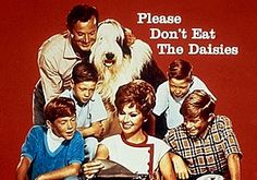 classic 1960s tv shows - Google Search