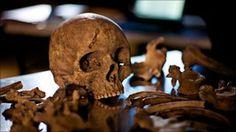 BBC Mundo - Noticias - La vida de los antiguos romanos, según su excremento