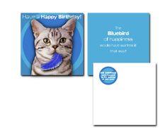 Hallmark Humor Card • Feather Attachment.