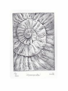 Etching no.19 of an ammonite fossil in an edition of 100 £30.00