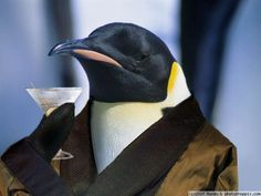 Leisure Penguin