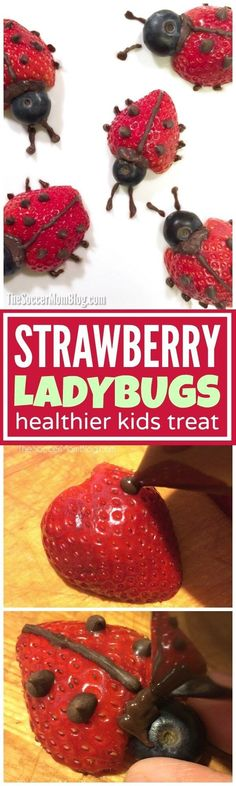 These easy strawberry ladybugs make eating fruit fun! A healthy after school sna… These easy strawberry ladybugs make eating fruit Cute Snacks, Fruit Snacks, Healthy Snacks For Kids, Cute Food, Good Food, Eat Fruit, Strawberry Snacks, Ladybug Snacks, Fun Recipes For Kids