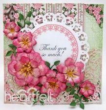Pink Arianna Blooms