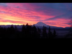 Mt Rainier!