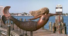 Norfolk Mermaids Board, Norfolk Festevents Page Norfolk Virginia, Virginia Is For Lovers, Newport News, Roadside Attractions, Hampton Roads, Portsmouth, New Adventures, Virginia Beach, Oh The Places You'll Go