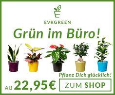 Evrgreen.de - Pflanz dich glücklich