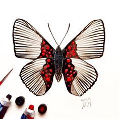 """Day 18 of my challenge #100daybutterflies #100daychallenge """"Lyropteryx Apollonia"""" can be found in South America, more specifically in Ecuador, Brazil,Mato Grosso, Bolivia , Peru and Colombia! #arts_help #art_we_inspire #imaginationarts #artdaily #craftsposure #challenge #art #painting #illustration #butterfly #handdrawnart #valleyofbutterflies #nature #phooftheday #doodle #love #bw #rtistic_feature #featuregalaxy #creative_instaarts  #me #worldbutterflies #happy #watercolor #acrylic #paint…"""