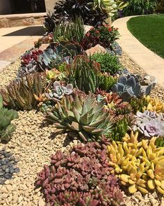 Beautiful Front Yard Flowers Garden Landscaping Ideas Flower beds give you the chance to bring color and texture to your landscape design. Succulent Landscaping, Succulent Gardening, Front Yard Landscaping, Succulents Garden, Backyard Landscaping, Landscaping Ideas, Flowers Garden, Landscape Design, Garden Design