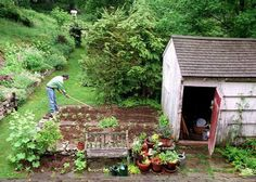 michael pollan's garden