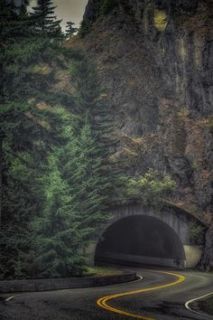 "thepictorialist: "" Goin' thru—Hurricane Ridge Rd, Olympic National Park, WA 2005 """