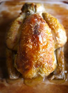 Rock Salt Roast Chicken