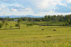 Flying U Ranch, 70 Mile House, BC #ExploreGoldCountry