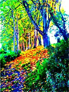 oil painting ( original picture before painted, picture of my forest outside my house)