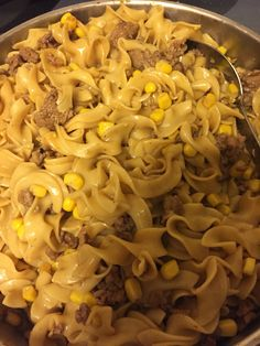 Dinner for 4 under $6!   1 pound ground turkey One bag of egg noodles  One can of corn  2 cups of gravy This yummy turkey and gravy dish satisfied my three boys! Add a can of biscuits to make it even better! I shopped at Aldi turkey - $3.29 egg noodles -$1.00 one can of corn $.60 and I had gravy but you can get two packs for  $.49 each... That extra can of biscuits only $1.29