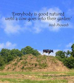 #Irish, #garden