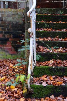 Fotos vom verlassenen Teil eines riesigen Nervenheilanstaltgebietes (Psychatrie)   Copyright: www.lost-places-nrw.de