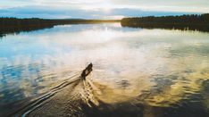 Travelpello: Salmon River Tornio River (Tornionjoki - Torne in Swedish) in Lapland, Finland – salmon fishing in Finnish Lapland Lapland Finland, Salmon Fishing, Waves, Mountains, Nature, Summer, Outdoor, Outdoors, Naturaleza