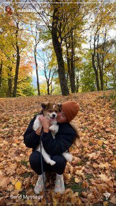 Autumn Aesthetic, Fall Baby, Best Seasons, We Fall In Love, Fall Season, Fall Halloween, Instagram Story, Cute Animals, Fall Winter