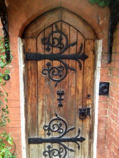 Cast iron door hinges, growth forms from nature
