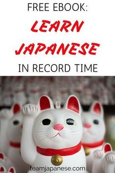 How to learn Japanese FAST! This awesome and FREE ebook shares loads of polyglot secrets for faster language learning! Don't waste time on ineffective study methods. Use tried and tested methods to speed up your learning and speak Japanese quickly! #learnjapanesefast #howtolearnjapanese