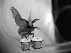 White fluffy moth uk (Playing the drums) <3 <3 <3