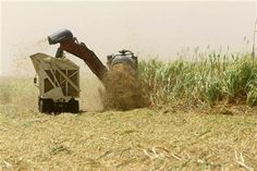 Decomposing Total Factor Productivity of Sudanese Sugarcane Factories (2000-2007)